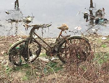 bici lungo il fiume